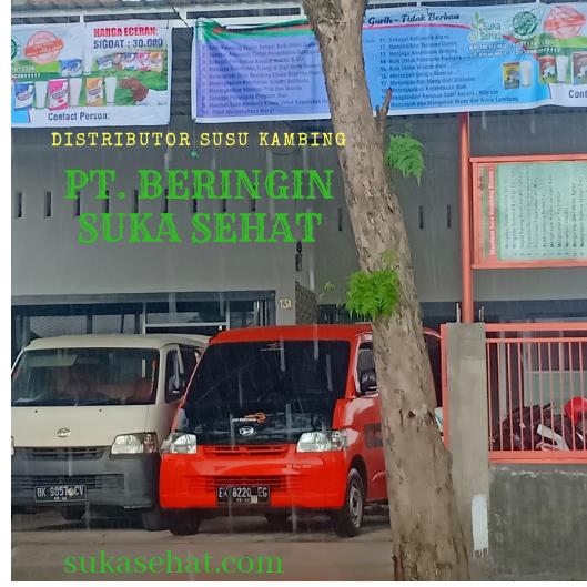 Distributor Susu Kambing Etawa