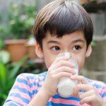 manfaat susu sigoat untuk anak
